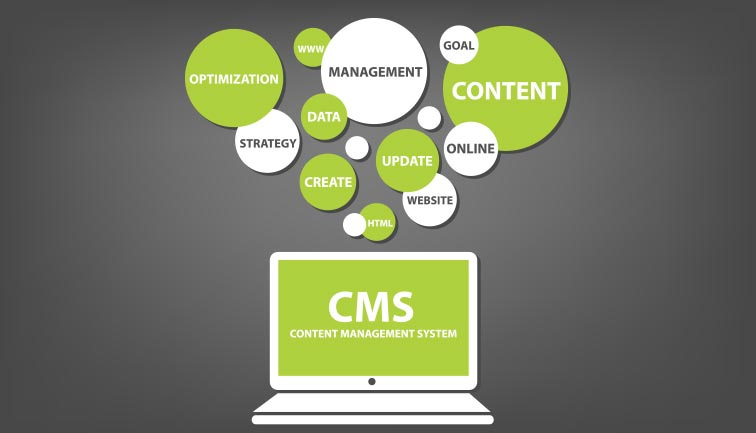 Popular Content Management Systems Online